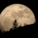Supermoon: When & Where To See It Best TONIGHT